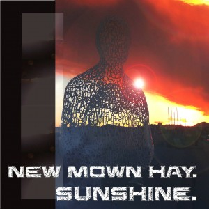 new-mown-hay-sunshine-edit2