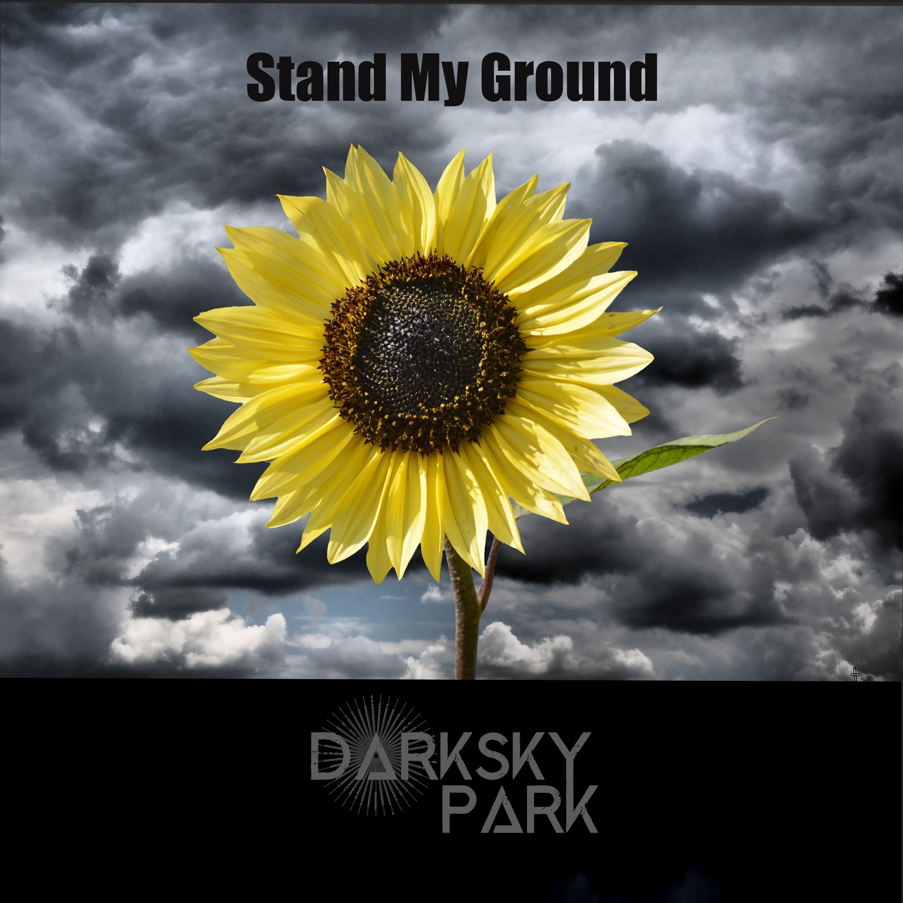 Dark Sky Park release a new single in aid of Refuge a UK charity for women & children escaping domestic violence.